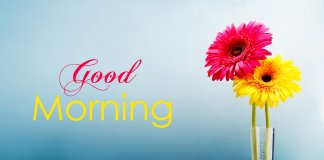 Good Morning Friday Images Wallpapers