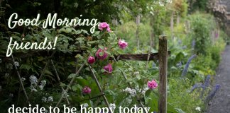 Good Morning Wishes Quotes For Friend