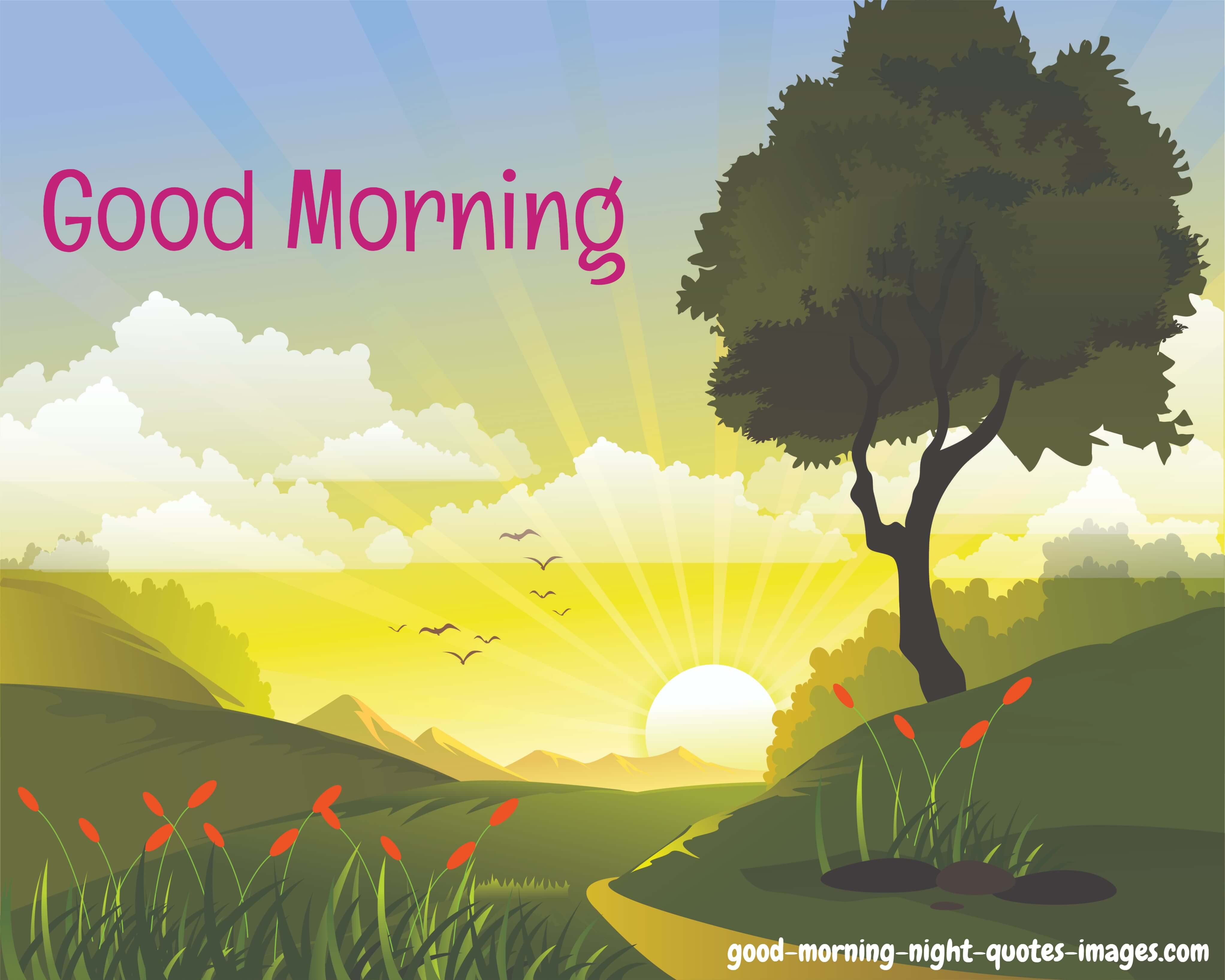 50 Good Morning Greetings Cards For Everyone Good Morning Night